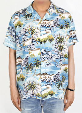 (Restock) RD S.Hawaiian Short Sleeve Shirts